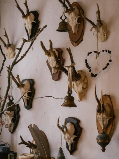 Antler Wall Plaques